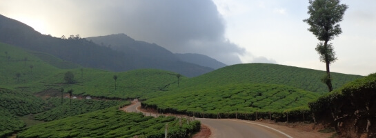Munnar and Thekkady Taxi Service with Kumarakom